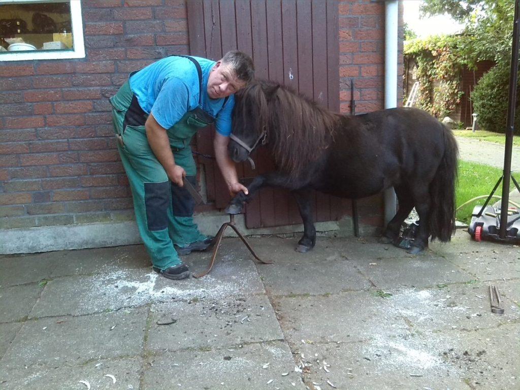 Großer Mann, kleines Pony